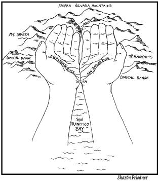 A great way to learn the bay ecology https://educationoutsideafy.wordpress.com/